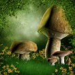 Forest glade with mushrooms — Stock Photo #13924358