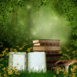 Fairytale books on a meadow — Stok fotoğraf