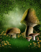 Forest glade with mushrooms — Stock Photo
