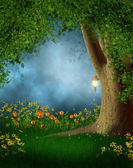 Forest glade with flowers — Stock Photo