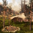 Indian tent in an old forest — Stock Photo #13957087