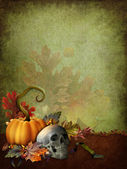 Halloween background with a skull — Stock Photo