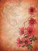红色秋花 — 图库照片