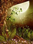Stare drzewo i paproci — Zdjęcie stockowe