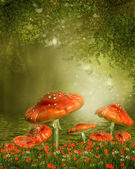 Mushrooms by a pond — Stock Photo
