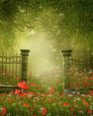 Fence on a colorful meadow — Stock Photo