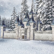 Winter castle — Stock Photo