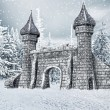 Castle gate with snow — Stock Photo #35039915