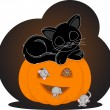 Cat sleeps on Halloween — Stock Vector