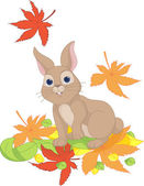 Hare looks at the falling leaves — Stock Vector