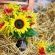 YELLOW FLOWERS IN A VASE ON HAY — Stock Photo