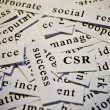 Corporate social responsibility, CSR — Stock Photo