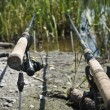 Stock Photo: Feeder method fishing rods