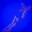 Tag or word cloud Waitangi Day related in shape of New Zealand — Stock Photo