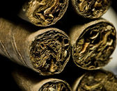 Macro of brown dry cigarettes or cigarillo as addiction concept — Stock Photo