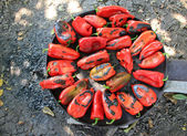 Peppers on the stove — Stock Photo