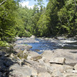 Maine river — Stock Photo #12757426