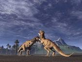 T.rex Fight — Stock Photo