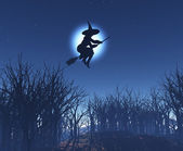 Witch flying on her broom — Stockfoto