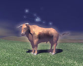 Symbol of the zodiac sign of Taurus — Stock Photo