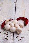 Świeże grzyby — Zdjęcie stockowe