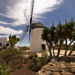 Stock Photo: Old windmill in Antigua