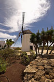 Old windmill in Antigua — Stock Photo