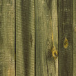 Wood texture — Stock Photo #36528169