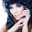 Foto Stock: Winter portrait of a beautiful woman