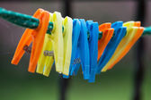 Colorful clothes pegs — Stock Photo