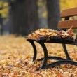 Bench in autumn park — Stock Photo #33463351