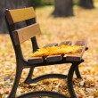 Bench in autumn park  — Stock Photo #33463353