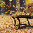 Foto Stock: Bench in autumn park