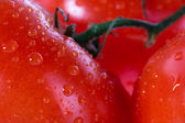 Tomatoes in macro photography — Stock Photo