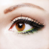 Eye close up with beautiful make-up, macro photography — Stock Photo