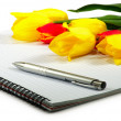Notebook pen and flowers — Stock Photo