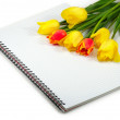 Flowers on the notebook — Stock Photo