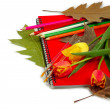 Office supplies and flowers — Stock Photo