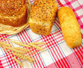 Delicious bread on the tablecloth — Stock Photo