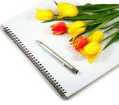 Anteckningsbok och blommor — Stockfoto
