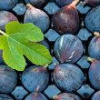 Black Fig — Stock Photo