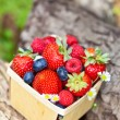 Fresh Berries in basket — Stock Photo #29327777