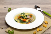 Vegetable soup with spinach and pasta — Photo