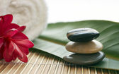 Spa setting with Stones and flowers — Stock Photo