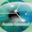 Access granted after eye scan — Stock Photo