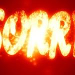 Sorry — Stock Photo #31426819
