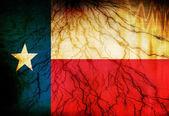 Texasan vlajka — Stock fotografie