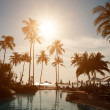 Silhouettes of palm trees on sunset - Stock Photo