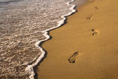 Footprint on the beach — Stock Photo