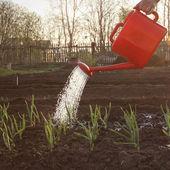 Garden work — Foto de Stock